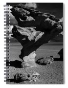 Arbol De Piedra Black And White Spiral Notebook