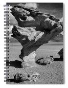 Arbol De Piedra Black And White Framed Spiral Notebook