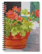 Arbor Gallery Steps Spiral Notebook
