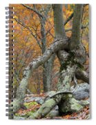 Arboreal Architecture Spiral Notebook
