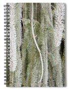 Arboretum Hoar Frost 2 Spiral Notebook