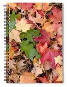 Arboretum - Oak Spiral Notebook