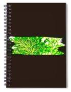 Arbres Verts Spiral Notebook