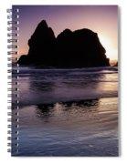 Arcadia Silhouette Spiral Notebook