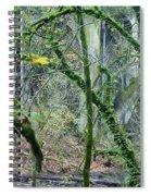 Arch  Bridge Through Trees Spiral Notebook