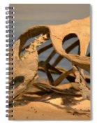 Archelon Relic Spiral Notebook
