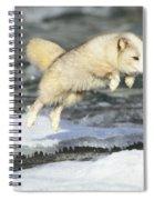 Arctic Fox Jumping Spiral Notebook