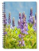 Arctic Lupine Spiral Notebook