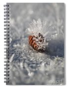 Arctic Pine Cone Porcupine Spiral Notebook