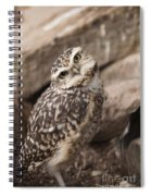 Are You Looking At Me? Spiral Notebook