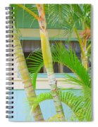 Areca Palms At The Window Spiral Notebook