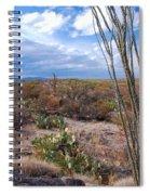 Arizona Afternoon Spiral Notebook