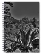 Arizona Bell Rock Valley N9 Spiral Notebook