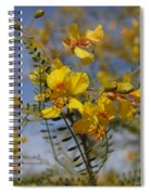 Arizona Gold Spiral Notebook