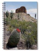 Arizona Icons Spiral Notebook
