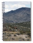 Arizona Mountains Spiral Notebook