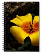 Arizona Poppy Spiral Notebook
