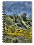 Arizona Spring Spiral Notebook