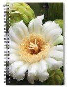 Arizona State Flower The Saguaro Blossom Spiral Notebook