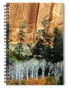 Arizona's Betatkin Aspens Spiral Notebook