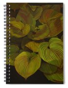 Arkansas Green Spiral Notebook