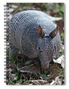 Armadillo Closeup Spiral Notebook