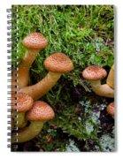 Armillariella Polymyces Spiral Notebook