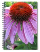 Aroma Of Life  Spiral Notebook