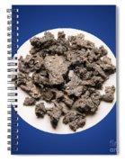 Arsenic Spiral Notebook