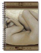 Art For The Sake Of Art Woman Framed 3 Spiral Notebook