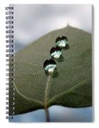 Art Of Balance Spiral Notebook