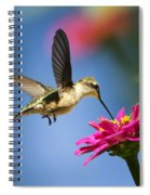 Art Of Hummingbird Flight Spiral Notebook