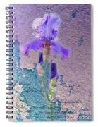 Art On Plaster Spiral Notebook