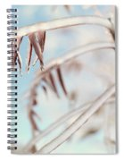 Artistic Abstract Closeup Of Frozen Tree Branches Spiral Notebook