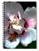 Artistic Shades Of Light And Pollinating Bee Spiral Notebook