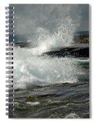 Artist's Point Spiral Notebook