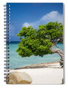 Aruba Tree Spiral Notebook