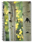 As Autumn Arrives  Spiral Notebook
