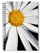 As Bright As A Daisy... Spiral Notebook