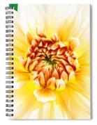 As Golden As A Summer's Day Spiral Notebook