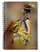 Pow Wow As In A Dream 2 Spiral Notebook