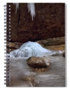 Ash Cave Frozen Over Spiral Notebook