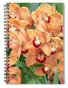 Asian Corsage Orchid Spiral Notebook