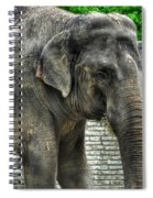 Asian Elephant  0a Spiral Notebook