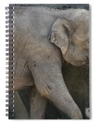 Asian Elephant Spiral Notebook