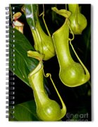 Asian Pitcher Plant Spiral Notebook