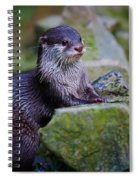 Asian Small Clawed Otter Spiral Notebook