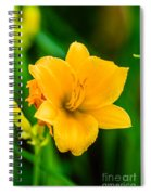 Stella De Oro Lilly Spiral Notebook