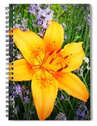 Asiatic With Lavender  Spiral Notebook