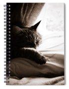 Asleep At Last Spiral Notebook